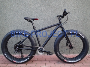 BUSTER - FAT BIKE 2 Alu (SunRace 1x10)
